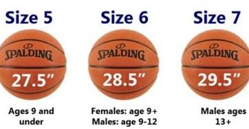 Ukuran Bola Basket untuk Pertandingan Resmi