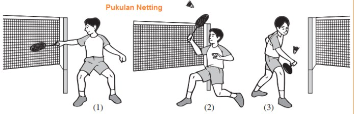 Teknik Netting