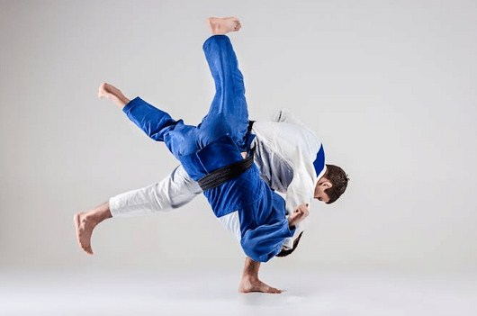 Pengertian Judo