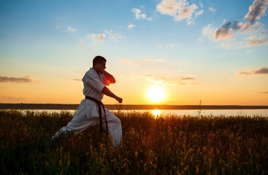 manfaat olahraga karate