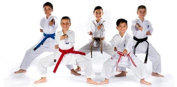 pengertian karate