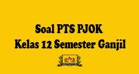 Soal PTS PJOK Kelas 12 Semester Ganjil