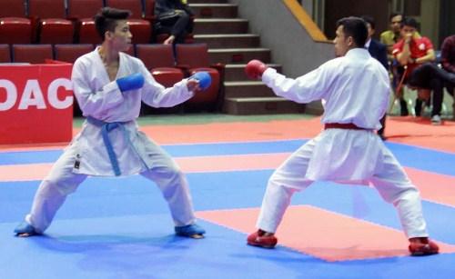 Olahraga Karate