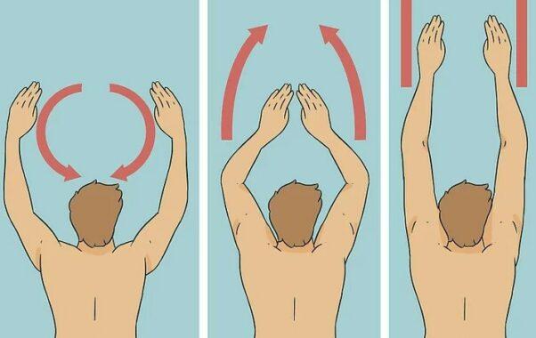 Teknik Lengan Renang Gaya Dada